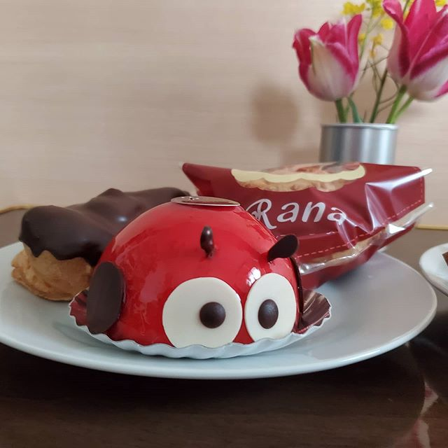 八女市山内のケーキ屋「パティスリー・ラーナ」さんのシュークリーム、てんとう虫、エクレアです。とってもおいしかったですぽんも狙ってました